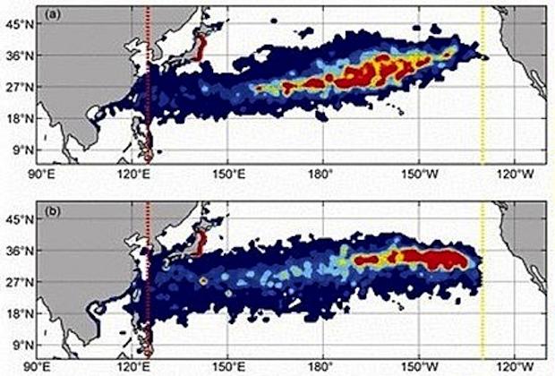 Fukushima Ocean Radiation Map