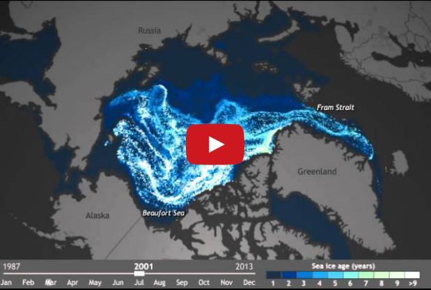 Watch the Arctic Ice Melt in 1 Minute