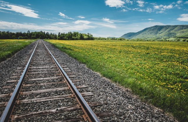 Back on Track: a special edition of New Business Paradigms